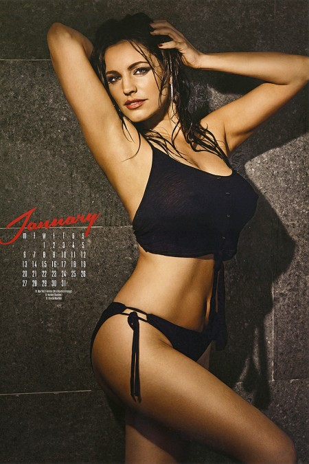 kelly-brooks-2014-lingerie-calendar-02-450x675