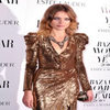 Natalia Vordinuova, Yasmin Le Bon And Other Celebs Attend Harpers Bazaar Women Of The Year Awards 2010 – Pictures